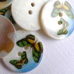 Parelknoop bedrukt met vlinders