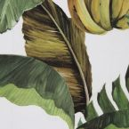 Furniture fabric printed with banana leaves