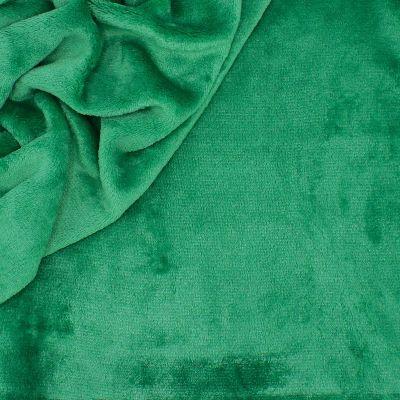 Minky fluweel - effen groen
