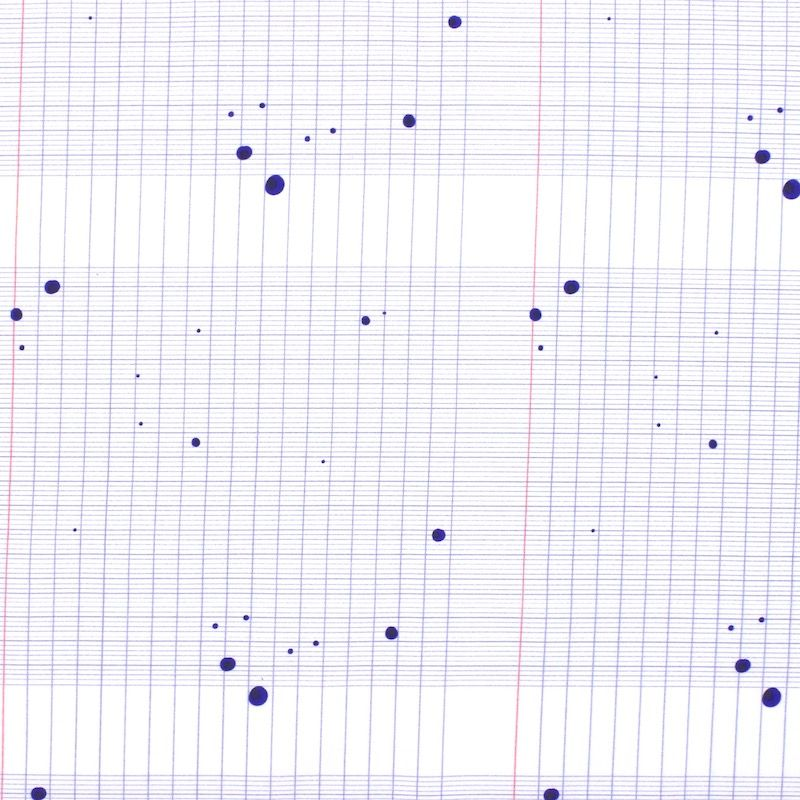 Popeline coton cahier taché - blanc