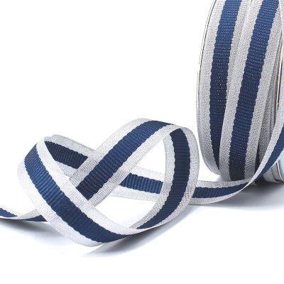 Zilveren biesband - blauwe streep